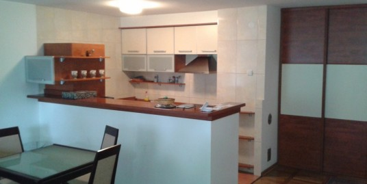 Good apartment in downtown, 65m2, one bedroom
