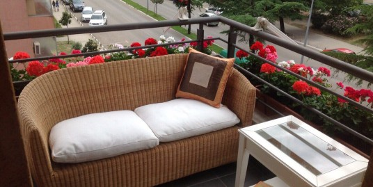 Apartment 70m2, Riverside Moraca, partly furnished